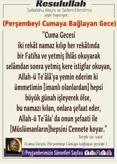 Allah, Religion, Faith, Animals, Religious Education, Loyalty, Allah Islam, Believe