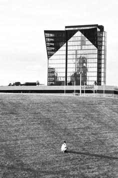 B&W reflection - Birrarung Marr Park, Melbourne Canon Eos 1100d, Uni, Melbourne, Reflection, Louvre, Park, Building, Travel, Life