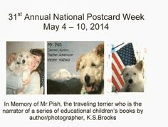 My Favorite Animal Postcards: Mr. Pish, The Traveling Terrier Dog