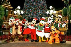 someday I want to see Disney decorated for Christmas :)