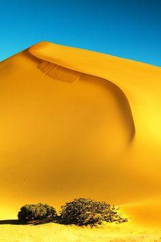 Desert. Sand Dunes