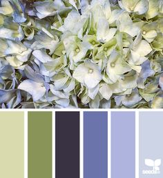Hydrangea Hues - http://design-seeds.com/index.php/home/entry/hydrangea-hues6