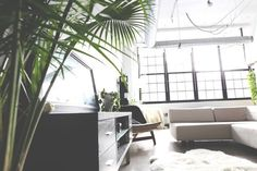 Image via We Heart It #beautiful #design #green #home #homesweethome #house #inspiration #interior #interiordesign #living #livingroom #loft #plants #room