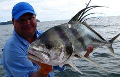 Panama: Regenzeit bringt starke Pazifik Raubfische