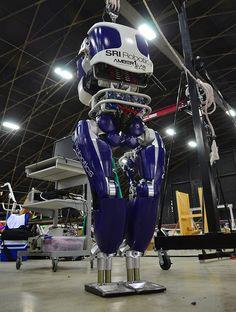 DURUS: SRI's Ultra-Efficient Walking Humanoid Robot   SRI has developed a legged robot that's much more efficient than traditional walking humanoids. (+video)