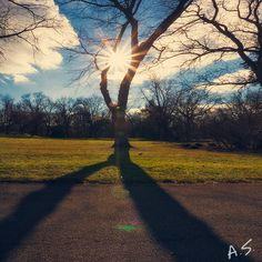 Catching light at the Park of Roses. Columbus, Ohio.  #Columbus #Ohio #Parkofroses  www.andyspessard.com © 2014 Andy Spessard Photography