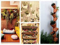 www.diy-gardensupplies.com Contemporary vertical garden ideas is a great tips for you who are interested with this kind of gardening. It is very suitable for you who h...