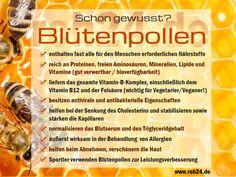 Schon gewusst? Interessante Infos zu unserem Superfood Blütenpollen (Bienenpollen) https://www.roh24.de/rohkost/bluetenpollen-bienenpollen-ganz-100-rein-spitzenqualitaet
