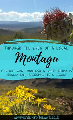 Through The Eyes Of A Local: Montagu, South Africa Places To Travel, Places To Visit, Afrikaans, Africa Travel, Cape Town, South Africa, Road Trip, Southern, Wanderlust