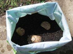 DIY Potato Grow Bag