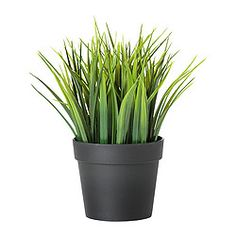 IKEA - FEJKA, Artificial potted plant, Lifelike artificial plant that remains looking fresh year after year.Perfect if you can't have a live plant, but still want to enjoy the beauty of nature.