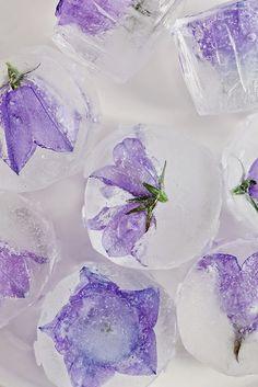 beautiful floral ice chunks