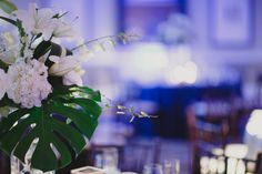 #weddingreception #reception #wedding #bluelights #whiteflowers