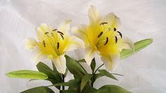 Как сделать Желтые лилии бумаги цветок из гофрированной бумаги - Craft У...