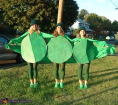 3 Peas in a Pod Group Halloween Costume Idea