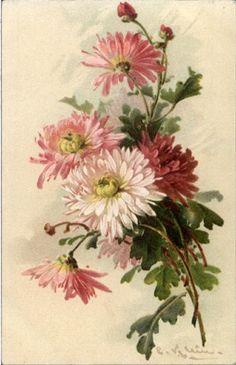 Floral Patterns!