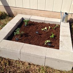 Fab Everyday | Because Everyday Life Should be Fabulous | www.fabeveryday.com: DIY Cinder Block Raised Garden Bed