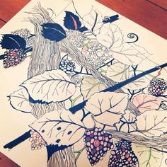 Coloring Book Interview Series, #2: Cherry Wynn-Williams | Doodlers Anonymous