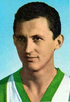 Florian Albert of Ferencvaros & Hungary in World History, Football Players, Hungary, 1960s, Legends, Number, Club, Sports, Picture Cards