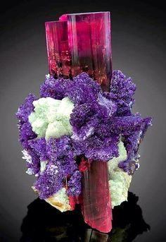 Stunning combination of Elbaite with albite and Lepidolite. From Oceanview Mine, San Diego County, California. © DI Anton Watzl Visit Amazing Geologist for more. Minerals And Gemstones, Rocks And Minerals, Natural Crystals, Stones And Crystals, Gem Stones, Crystal Magic, Rock Collection, Beautiful Rocks, Mineral Stone