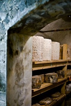 Cheese Cave, Wine Cheese, Root Cellar, Wine Cellar, Oscar Wilde, Melrose Market, Old Basement, Fromage Cheese, Aged Cheese