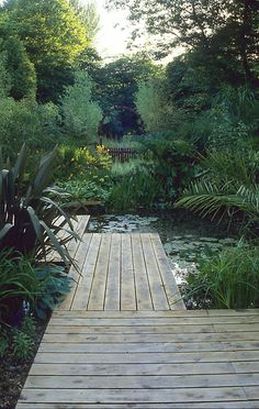 A former damp and shady lawn replaced with a pond, waterfall, deck and boardwalk to bring new life and vitality to a peaceful and secluded garden in East Sussex (Diy Garden Waterfall) Back Gardens, Small Gardens, Outdoor Gardens, Tropical Gardens, Tropical Landscaping, Water Features In The Garden, Garden Landscape Design, Landscape Plans, Garden Spaces