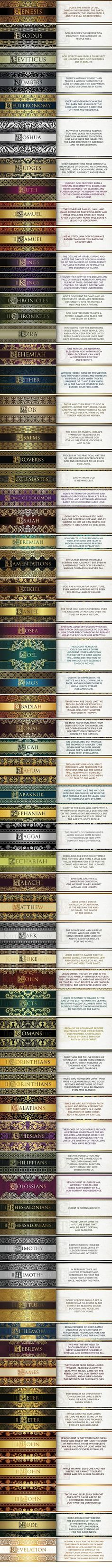 The 66 Books of the Bible each with a synopsis...