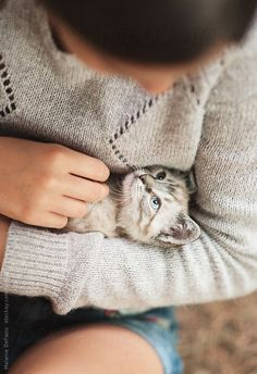 snuggle. matching cat and sweater. #lifegoals