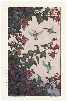 Hummingbird and Fuchsia, 1971 by Toshi Yoshida (1911 - 1995); Japanese woodblock print............ ukiyoe japan decoration antique fineart home decor collectible japanese woodblock print handmade home art beautiful decorative etching illustration traditional woodcut