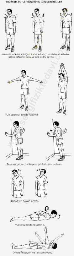 http://www.sevgifiziktedavi.com/fizik-tedavi-egzersizleri/torasik-cikis-sendromu-egzersizleri.jpg