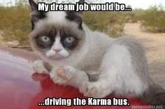 My dream job would be driving the karma bus. Beep beep yeah!