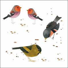 LOVING our NEW Matt Sewell Birds range so much we can't decide on a favourite! http://www.woodmansterne.com/greeting-cards/contemporary/