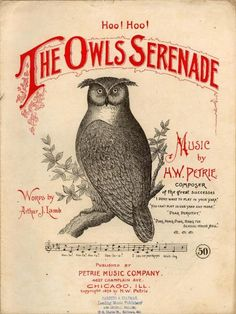 vintage Owl sheet music cover