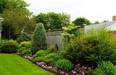 Backyard design 4