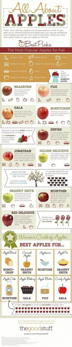 What is the Healthiest Apple? Why are apples so healthy?