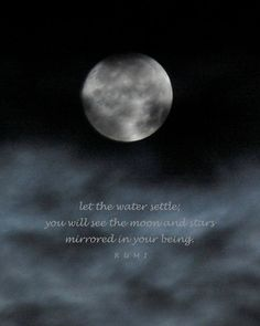 Let the water settle; you will see the moon and stars mirrored in your being. ~Rumi