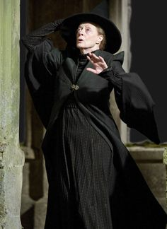 The strict but fair Head of Gryffindor house and Transfiguration teacher, who is of great help to Harry