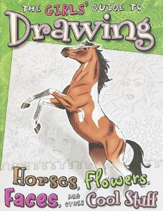 Girls' Guide to Drawing: Horses, Flowers, Faces and Other Cool Stuff (Drawing Fun) by Kathryn Clay
