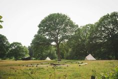 Licensed Festival Wedding Venue in Kent with dates for Tipi Wedding, Magical Wedding, Outdoor Wedding Venues, Field Shelters, Festival Wedding, Wedding In The Woods, Engagement Shoots, Celebrity Weddings, Glamping