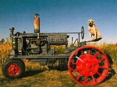 Gus the farm dog sits atop the old tractor!