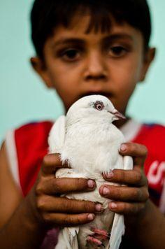 Posing with his bird - Gujarat