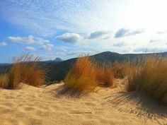 Sulle dune di Piscinas...come un dipinto,vera poesia !