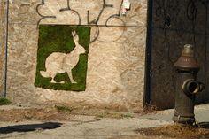 Mosstika | evian The Source  ecological street art, moss on urban walls