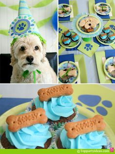 Dog Party Ideas - Dog with a party hat, dog party table setting