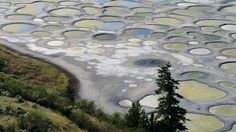 Bing Image Archive: Spotted Lake near Osoyoos, British Columbia (© Roberta Olenick/All Canada Photos/SuperStock )(Bing Canada)