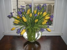 Clear vase with yellow tulips and blue irises. By James Bernard.