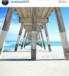 7 Instagram Photos Every UNCW Student Is Guilty of Taking | Her Campus