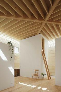 Light Walls House