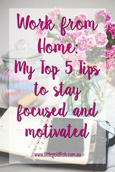 Work from Home: 5 tips to stay focused and motivated Business Advice, Business Entrepreneur, Make Money Online, How To Make Money, Dolla Sign, Budgeting Finances, Stay Focused, Goldfish, Saving Money