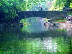 St Stephen's Green, Dublin  <3 Travel Journeys <3 www.travel-journeys.com…